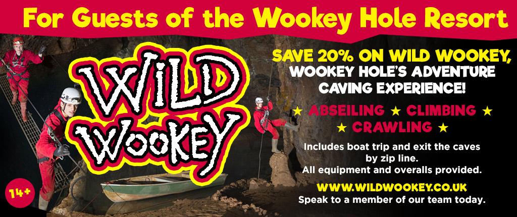 wild-wookey-hotel-offer-2018