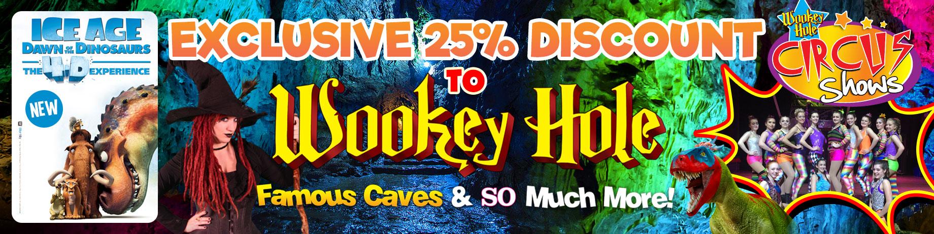 wookey-discount-banner-1