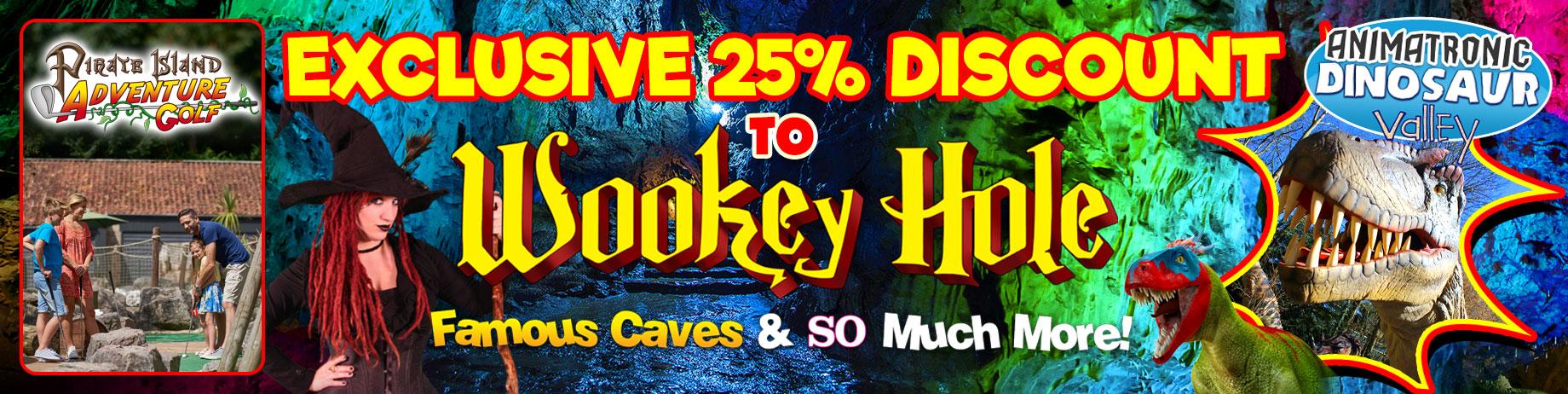 wookey-discount-banner-2020